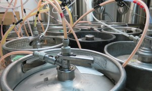 Pilsen region microbreweries tour